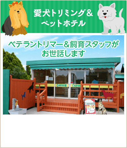 愛犬トリミング&ペットホテル